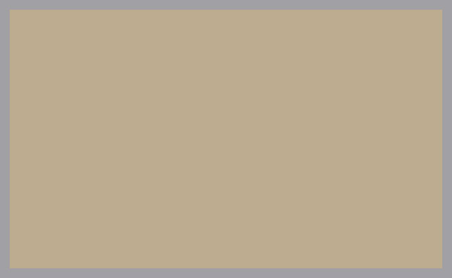 IMS_Colors_CHAMPAGNE