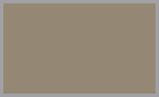 IMS_Colors_CLAY